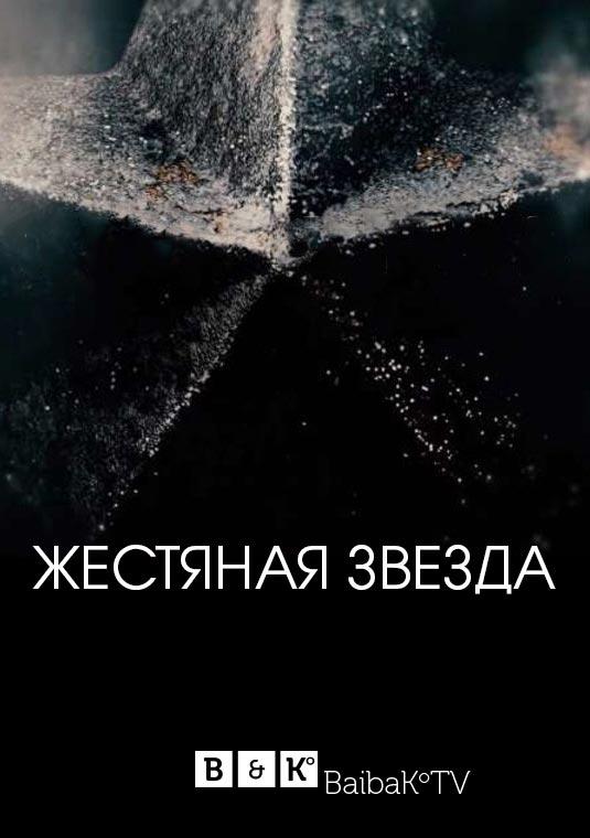 Жестяная звезда  10 серия